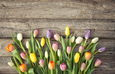 Beautiful colorful multicolred bouquet of tulips on old wood background