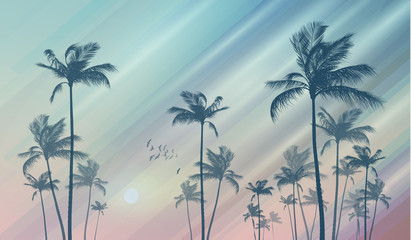 Wall Mural - Silhouette of tropical palm trees at sunset or sunrise, with cl