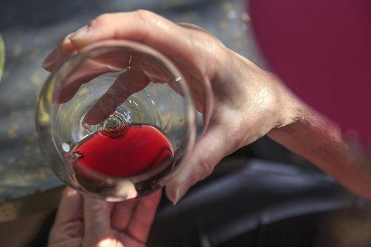 Europe, Spain, Balearic Islands, Mallorca. Esporles. Wine tasting.