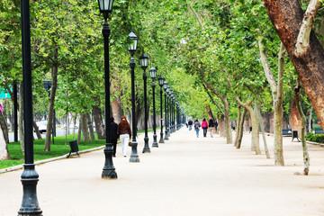 Chilean Park Walk
