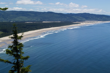 Oregon Coast in Summer