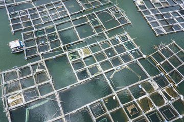 Aerial: Fish Farm Pond. Bali, Indonesia.