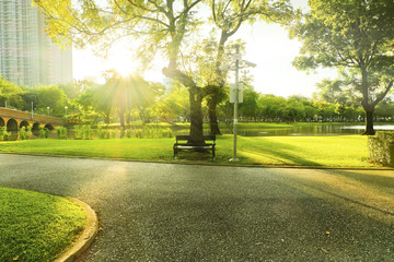 Bench in front of tree on morning  at park while light of sun shining.