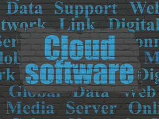Cloud networking concept: Painted blue text Cloud Software on Black Brick wall background with  Tag Cloud