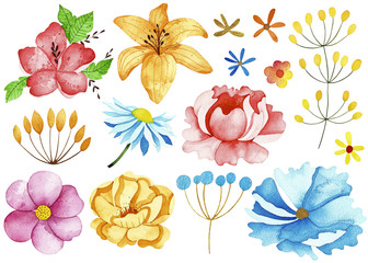 Watercolor spring collection. Perfect for you postcard design,invitations,projects,wedding card,poster,packaging.