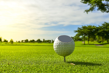 White Golf ball put on green grass of golf course