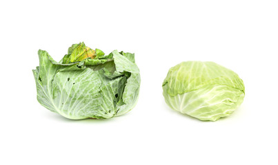 Fresh Vegetable Cabbage natural organic fresh from farm. With leaf wrap insects and worm are eaten. isolated on white background.