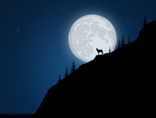 wolf on rope in the moonlight
