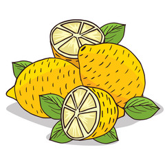 Isolate ripe lemon fruit on white background. Close up clipart with shadow in flat realistic cartoon style. Hand drawn icon