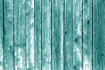 Grungy wooden wall background in cyan color.