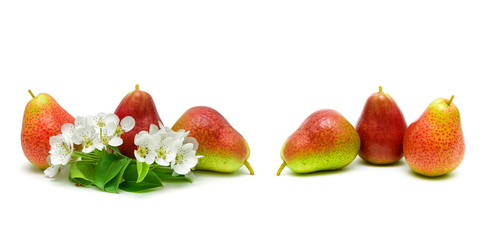 flowers and ripe pear fruit on white background