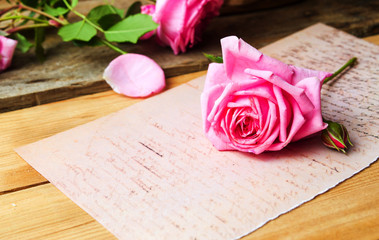 Pink roses on a vintage paper