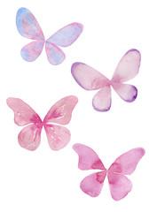 蝶の水彩イラスト