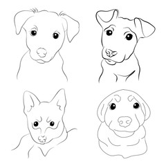 Muzzle puppy illustration set