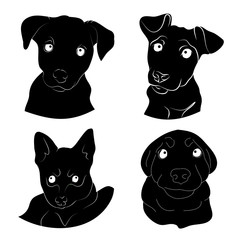 Muzzle puppy illustration set