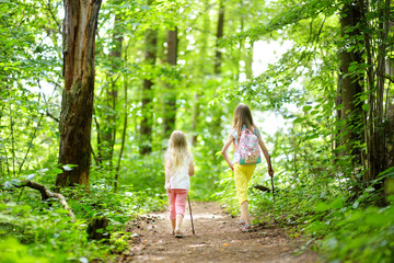 Two cute little sisters having fun during forest hike on beautiful summer day. Active family leisure with kids.