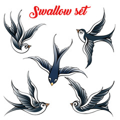 Swallow Set