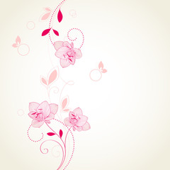 Floral background with flowers amaryllis and butterflies. Element for design. Vector illustration.