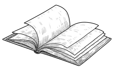 Open book illustration, drawing, engraving, ink, line art, vector