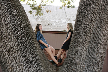Smiling sisters leaning on tree trunk at farm