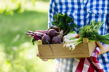 Women holding box with fresh organic vegetables and herbs, selective focus