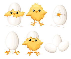 Set of funny chicken in egg for easter decoration cartoon vector flat clipart yellow bird in an egg shell vector illustration on white background