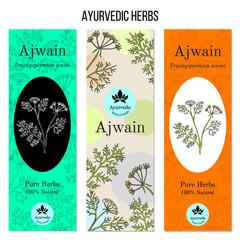 Ayurvedic herbs banners, ajwain