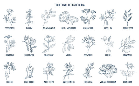 Chinese traditional medicinal herbs