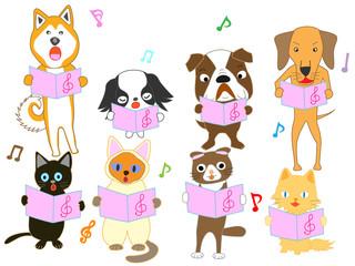 猫と犬のコンサート。