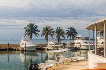 Tropical Boat Dock