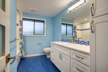 Gorgeous bathroom with blue walls
