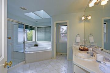 Elegant bathroom with skylight.