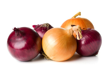group of onions isolated on white background