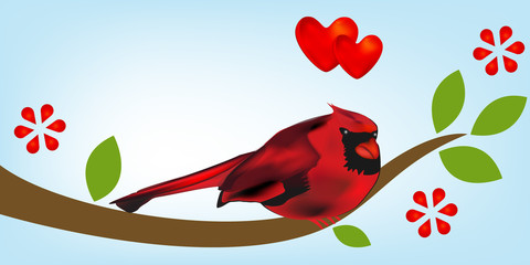Cardinal fall in love over a branch with flowers template background vector image
