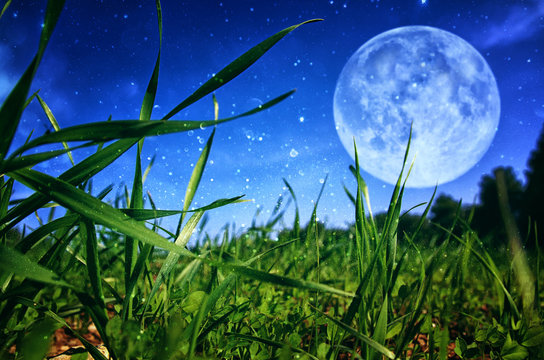 Surreal fantasy concept - full moon with stars glitter in skies background.