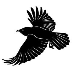 Vector image of silhouette of a raven flying on a isolated white background