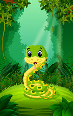Snake in the clear and green forest