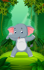 Elephant in the clear and green forest