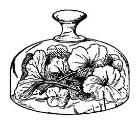 Glasglocke floral - glass cover floral