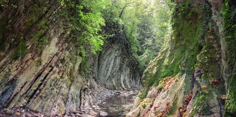 Мамедово ущелье. Россия, Краснодарский край, поселок Лазаревское. Горная река в лесу