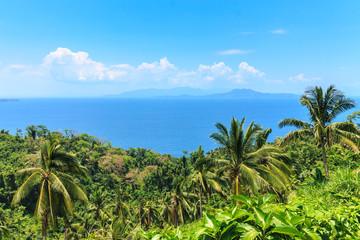 The Island Of Mindoro. Philippines.