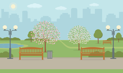 City park with benchs, lawn and blooming trees. Spring landscape background. Vector illustration.