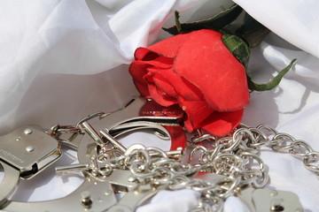 amour passionnel de la saint valentin