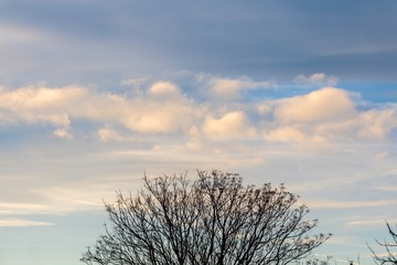 Beautiful skyscape with small clouds