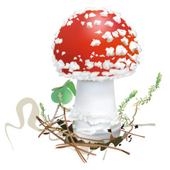 Amanita muscaria. Fly agaric mushroom.  White spotted beautiful red mushrooms in natural context. Realistic vector illustration on white background.