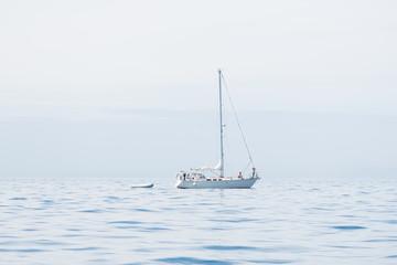 Segeljacht Vancouver Island