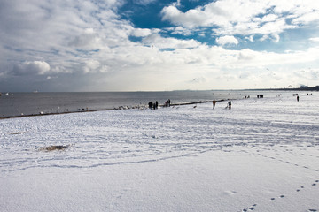Sopot - wybrzeże zimą
