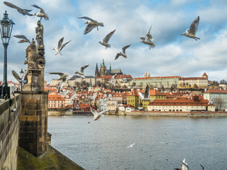 View of Prague Castle with Saint Vitus Cathedral.