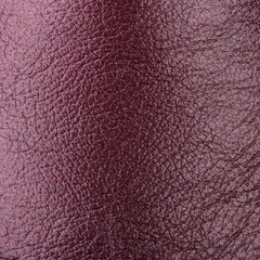 Lleather brown skin pattern