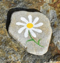 Daisy painted on a rock